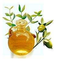Популярное масло жожоба смягчает и увлажняет деликатную кожу