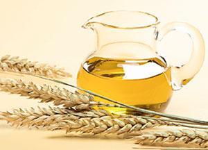 Масло зародышей пшеницы обладает уникальными свойствами