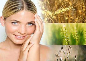 Полезные свойства пшеницы для лица и волос